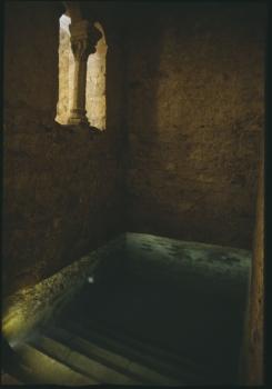 mikveh montpellier