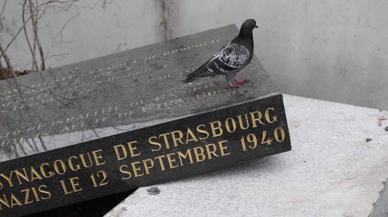 strasbourg stèle synagogue vandalisée février 2019
